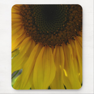 Partial Sunflower Mouse Pad