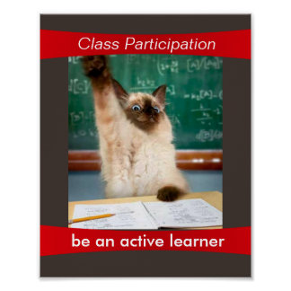Participation is a Virtue Classroom Poster