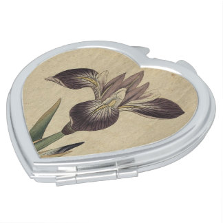 Particolored Iris Compact Mirror
