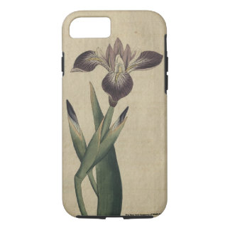Particolored Iris iPhone 8/7 Case