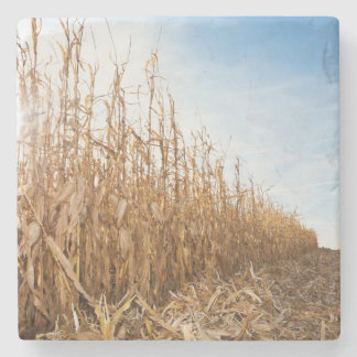 Partly Harvested Corn Field Stone Beverage Coaster