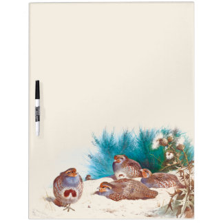 Partridges Birds Wildlife Animal Dry Erase Board