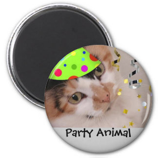 Party Animal/Calico Cat 2 Inch Round Magnet