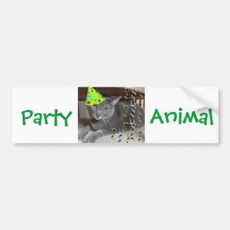Party Animal Gray Cat Bumper Sticker