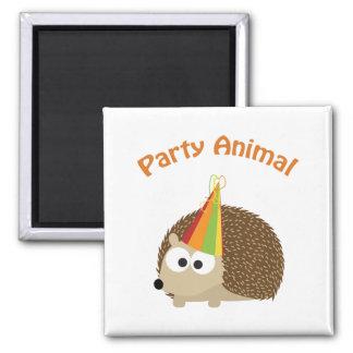 Party Animal! Hedgehog Square Magnet