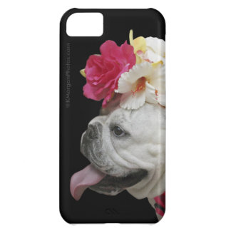 """Party Animal"" iPhone 5 Case"
