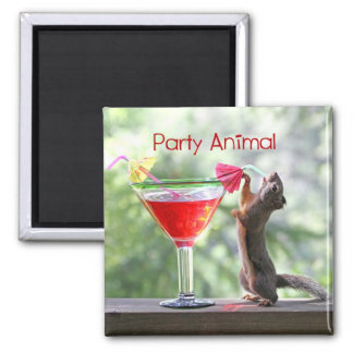Party Animal Squirrel Square Magnet