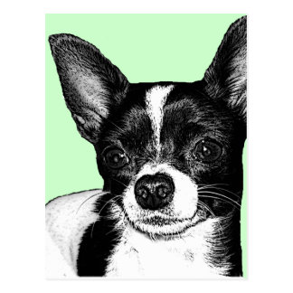 Party Chihuahua Postcard
