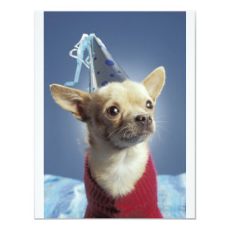 Party Dog Birthday Invitation