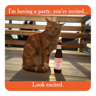 Party invitation featuring an orange cat