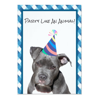 Party Like An Animal Black Dog With Hat Birthday Card