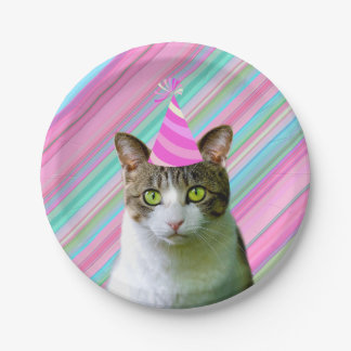Party Like an Animal Cat With Party Hat Birthday Paper Plate
