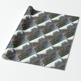 Party Supply Wrapping Paper