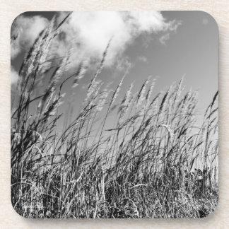 Passe-partout mounting, fields of wheat coaster