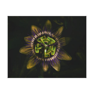 "passiflora 16""x12"" / 40x30 cm canvas print"