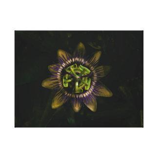 "passiflora 24""x18""/ 60x45cm canvas print"