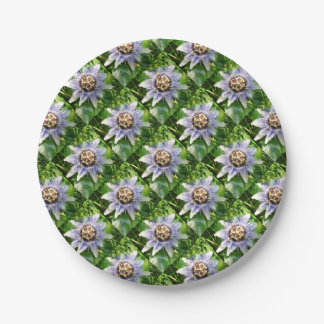 Passiflora Against Green Foliage In A Garden Paper Plate