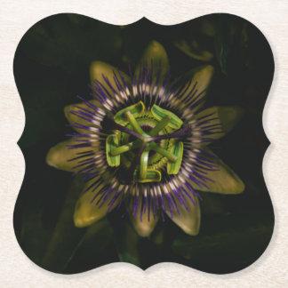 passiflora bracket paper coaster