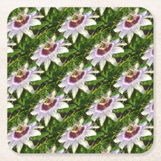 Passiflora Close Up With Garden Background Square Paper Coaster