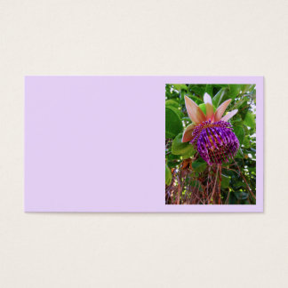 Passiflora Laurifolia Business Card
