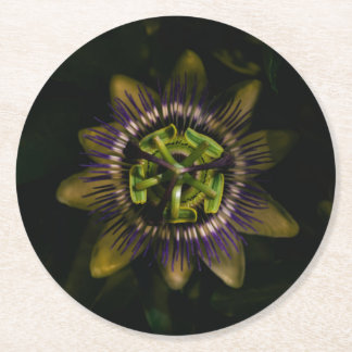 passiflora round round paper coaster