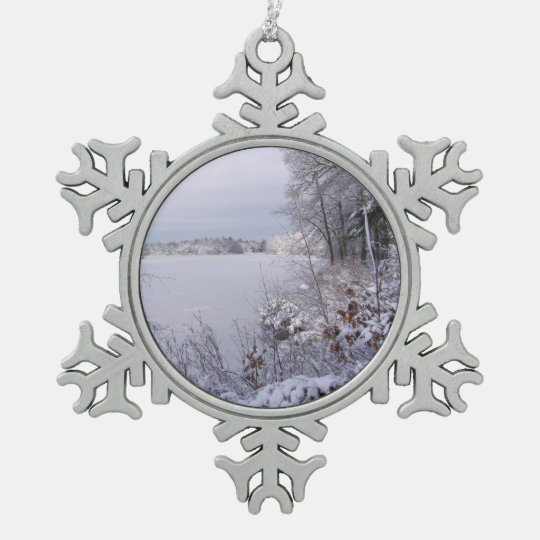 Passing Storm ~ Pewter ornament