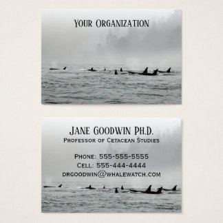 Passing Whales Business Card