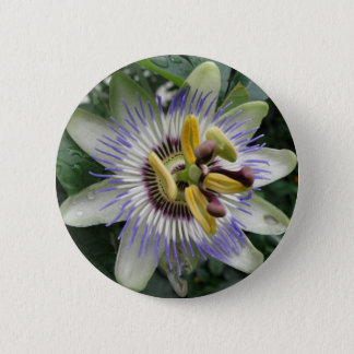 Passion Flower Button