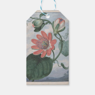Passion Flower Gift Tags