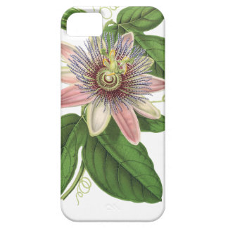Passion flower iPhone 5 covers