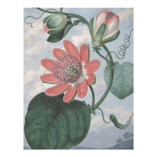 Passion Flower Letterhead