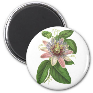 Passion flower magnet