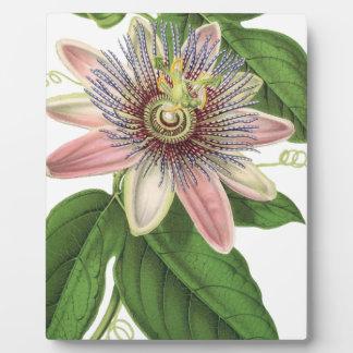 Passion flower plaque