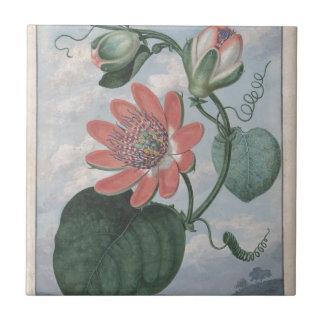 Passion Flower Tile