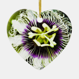 passion-fruit ceramic ornament