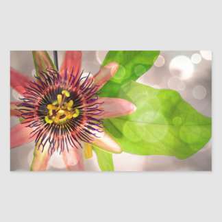 Passion Fruit Flower Sticker