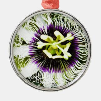 passion-fruit metal ornament