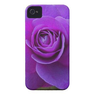 Passion iPhone 4 Cases