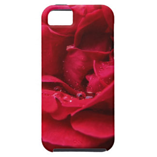 Passion Red Flower Case For The iPhone 5