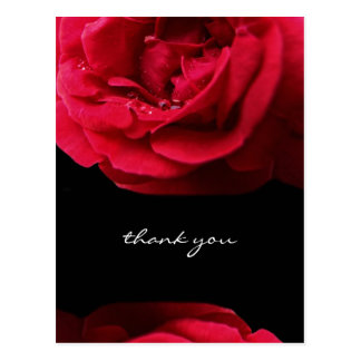 Passion Red Rose Thank You Postcard
