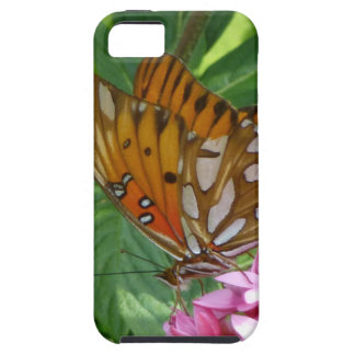 Passion Vine Butterfly iPhone 5 Cover