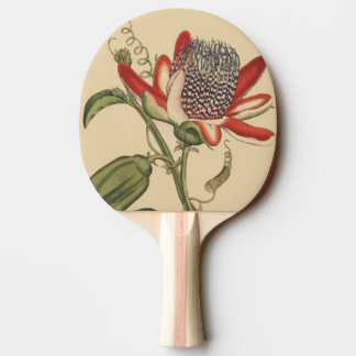 Passionflower Flower Floral Paddle Ping Pong Paddle