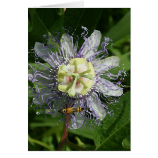 Passionflower Note Card