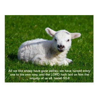 Passover Lamb, Isaiah 53 Postcard