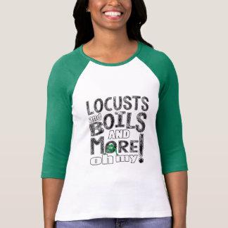 "Passover ""Oh My"" Women's Raglan Sleeve T-Shirt"