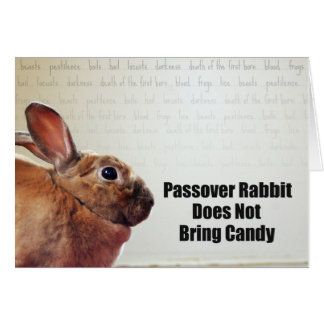 Passover Rabbit Does Not Bring Candy Card