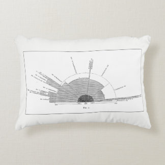 Past & Future of Geology Pillow