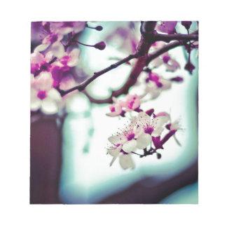 Pastel cherry blossom photo notepad