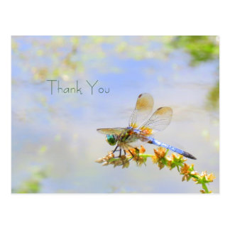 Pastel Dragonfly Thank You Postcard