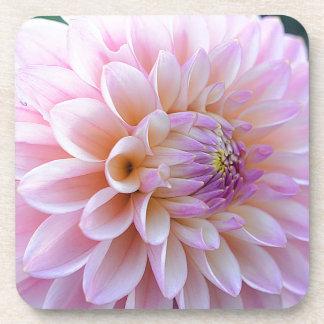 Pastel Hued Dahlia Coaster